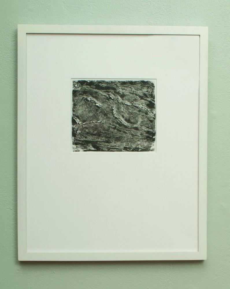 Aspects of Landscape (2)